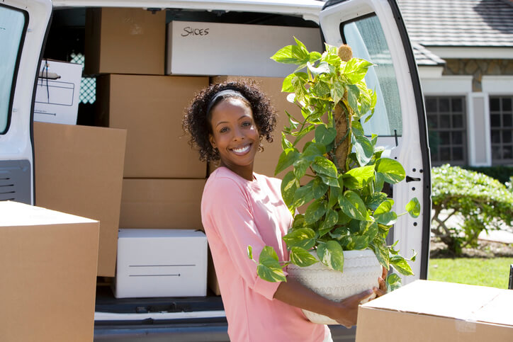 How to pack plants for a move