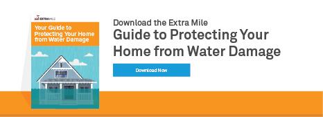Water Mitigation Ebook Download Button