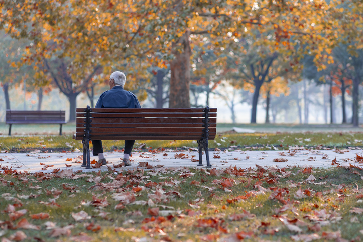 Fall Leaves Man on Bench