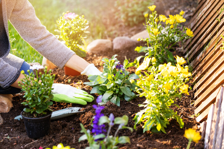 Home Composting is Good for Your Garden