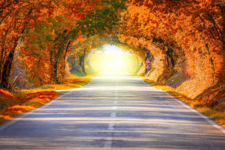 Leaf Peeping Drive